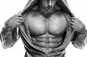 stock photo of six pack  - Strong Athletic Man Fitness Model Torso showing six pack abs - JPG