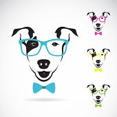 Vector Image Of A Dog (bull Terrier) Glasses