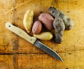 Fingerling Potatoes With Knife
