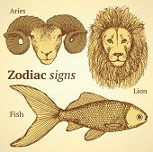 image of lion-fish  - Sketch zodiac ram fish and lion background - JPG