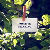 picture of positive thought  - Close up Positive Thinking Message on White Small Paper Clipped on Green Plant Outdoor - JPG