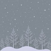 Starry winter night landscape illustration