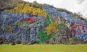 Prehistoric wall in Viñales, Cuba