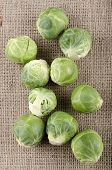 Brussels Sprouts On A Jute Cloth