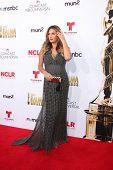 LOS ANGELES - OCT 10:  Daisy Fuentes at the 2014 NCLR ALMA Awards Arrivals at Civic Auditorium on October 10, 2014 in Pasadena, CA