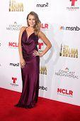LOS ANGELES - OCT 10:  Alexa Vega at the 2014 NCLR ALMA Awards Arrivals at Civic Auditorium on October 10, 2014 in Pasadena, CA