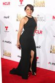 LOS ANGELES - OCT 10:  Selenis Leyva at the 2014 NCLR ALMA Awards Arrivals at Civic Auditorium on October 10, 2014 in Pasadena, CA