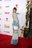 LOS ANGELES - OCT 10:  Mia Maestro at the 2014 NCLR ALMA Awards Arrivals at Civic Auditorium on October 10, 2014 in Pasadena, CA