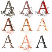 Various Combination Fishnet Letter A.