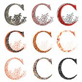 Various Combination Fishnet Letter C.