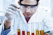 Male Scientist Doing Research In Laboratory