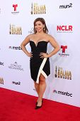 LOS ANGELES - OCT 10:  Justina Machado at the 2014 NCLR ALMA Awards at Civic Auditorium on October 10, 2014 in Pasadena, CA