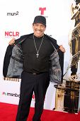 LOS ANGELES - OCT 10:  Danny Trejo at the 2014 NCLR ALMA Awards Arrivals at Civic Auditorium on October 10, 2014 in Pasadena, CA