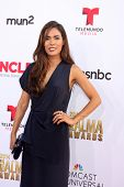 LOS ANGELES - OCT 10:  Daniella Alonso at the 2014 NCLR ALMA Awards at Civic Auditorium on October 10, 2014 in Pasadena, CA