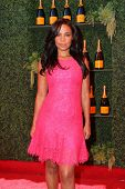 LOS ANGELES - OCT 11:  Sanaa Lathan at the Fifth-Annual Veuve Clicquot Polo Classic at Will Rogers State Historic Park on October 11, 2014 in Pacific Palisades, CA