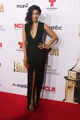 LOS ANGELES - OCT 10:  Stephanie Beatriz at the 2014 NCLR ALMA Awards Arrivals at Civic Auditorium on October 10, 2014 in Pasadena, CA