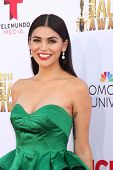 LOS ANGELES - OCT 10:  Melissa Barrera at the 2014 NCLR ALMA Awards at Civic Auditorium on October 10, 2014 in Pasadena, CA