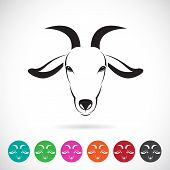 foto of goat horns  - Vector image of an goat head on white background - JPG