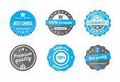 vector blue badges