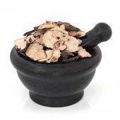 Zhu ling mushroom fungus used in chinese herbal medicine in a marble mortar with pestle over white b