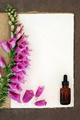 pic of digitalis  - Foxglove flower border with medicinal dropper bottle on a natural hemp notebook and brown paper background - JPG