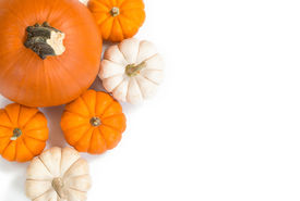 pic of pumpkin pie  - Pie pumpkin surrounded by mini pumpkins against white background top view copy space - JPG