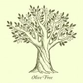 stock photo of olive trees  - Olive tree silhouette - JPG