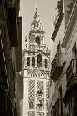 Traditional Spanish Building In Seville. La Giralda