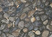 Cigarette stubs on ground