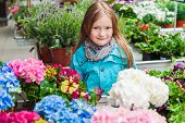 stock photo of flower shop  - Spring portrait of a cute little girl choosing flowers in flower shop - JPG