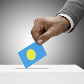 Black Male Holding Flag. Voting Concept - Palau