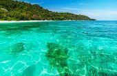 Coral Reef Under Crystal Clear Sea At Tropical Island Andaman Sea, Thailand