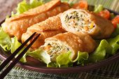 Fried Spring Rolls Stuffed With Vegetables Close-up. Horizontal