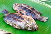 Grilled Fish On Banana Leaf