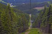 cableway at Mount Snow  passing through the pine forest