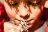 Beautiful Little Girl Playing With Flower. Focus On The Flower.