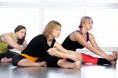 Group Of Yogi Females Stretching In Yoga Class