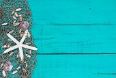 White starfish and shells in fish netting on teal blue wood beach sign