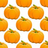 Pumpkin seamless pattern on white. vector illustration.