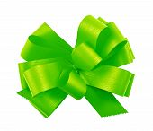 Gift ribbon bow isolated