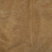 Rough brown fabric fragment