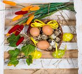 Easter Still Life. Quail And Chicken Eggs In A Basket With Spring Greens