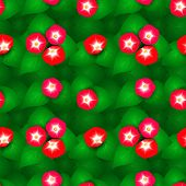 image of ipomoea  - Seamless pattern with flowers ipomoea red star - JPG