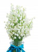 picture of lillies  - lilly of the valley posy close up  isolated on white background - JPG