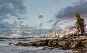 Los Cristianos Coast. Tenerife, Canary Islands. Spain