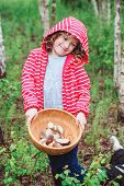image of gathering  - cute child girl gathering wild edible mushrooms in the forest - JPG