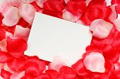 Rose petal notecard for use at valentine's day, sweetest day or for any romantic invitation or annou