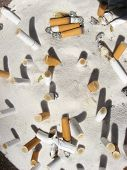 image of raunchy  - Cigarette buts in an ashtray - JPG