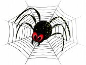 picture of black widow spider  - Illustration of cute black widow Spider on web - JPG