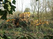 Lost Digger In Woodland